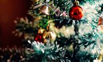 Festival of Trees starts the holiday season at the San Joaquin County Historical Museum