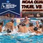 Men's Water Polo Faces UC Davis In NCAA Quarters Thursday