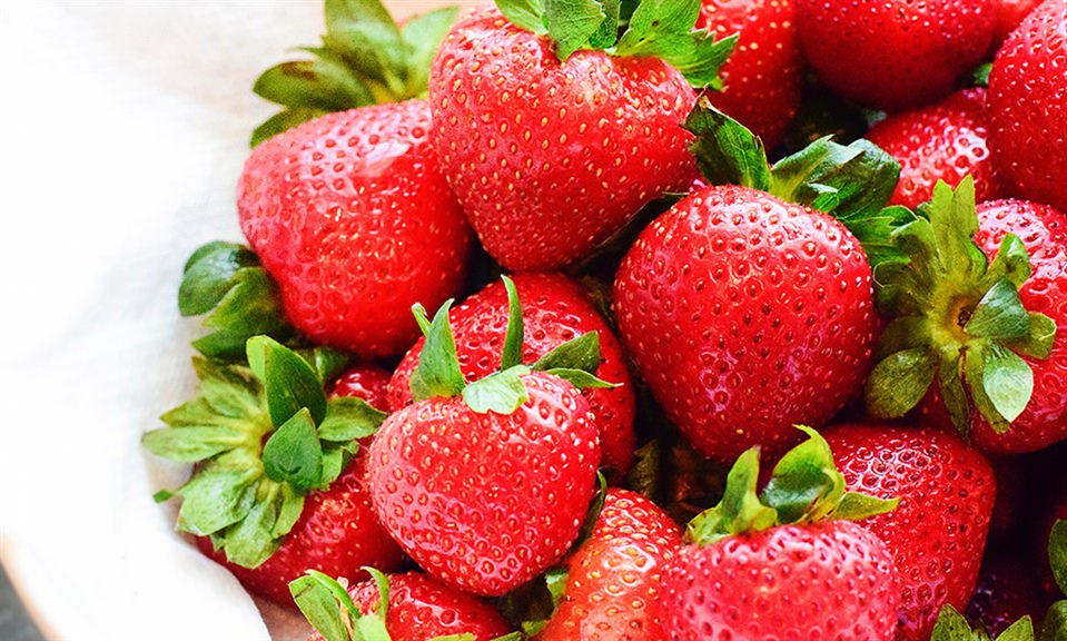 Strawberry Fundraiser for Education
