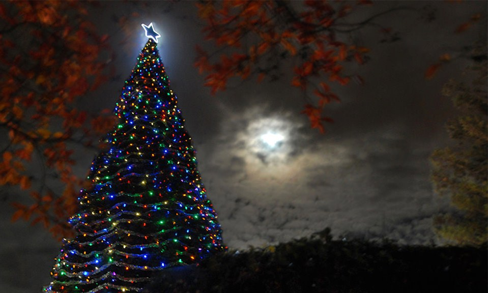 'Tree of Lights' tradition marks 30 years