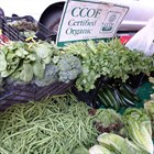 Downtown Farmer's Market Moves to a New Location