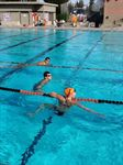 Swimming Trips To Cal Poly, UC Santa Barbara For Dual Meets